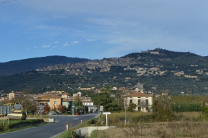 Cortona, in the hills