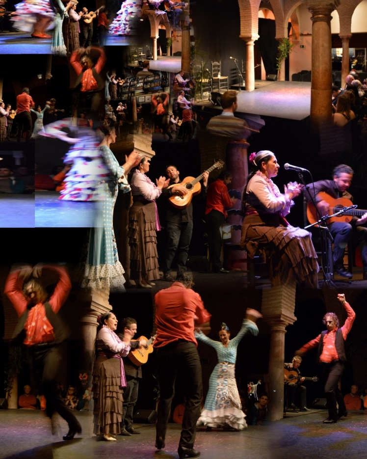 Flamenco Collage3